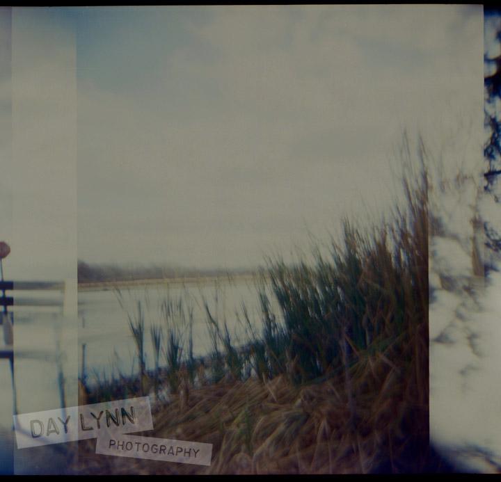 holga004_watermark